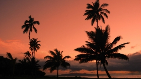 HealthPocket analysts say Hawaii has the worst exchange in the nation so far. Photo credit: freedigitalphotos.net