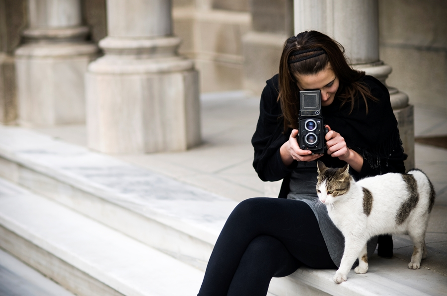 Woman photographing cat (photo: Getty)