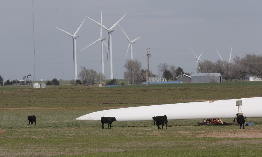 Cattle and wind turbines in Oklahoma (photo: AP)