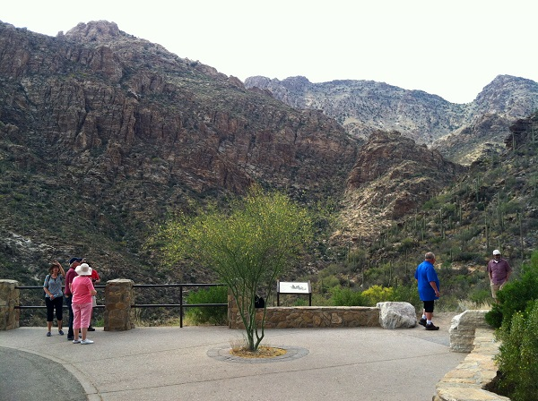 Arizona is still a popular place for retirees, and Tucson with its nearby Sabino Canyon is especially beautiful. (Photo: AP)