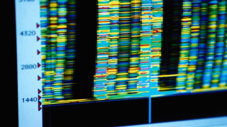 Companies that succeed in this realm recognize the need to embed customer experience in their DNA. (Photo: Thinkstock)
