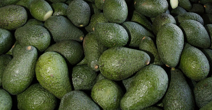 An Australian mogul blasted millennials for spending on 'avocado toast' rather than saving to buy a house -- but he was wrong. (Photo: AP)