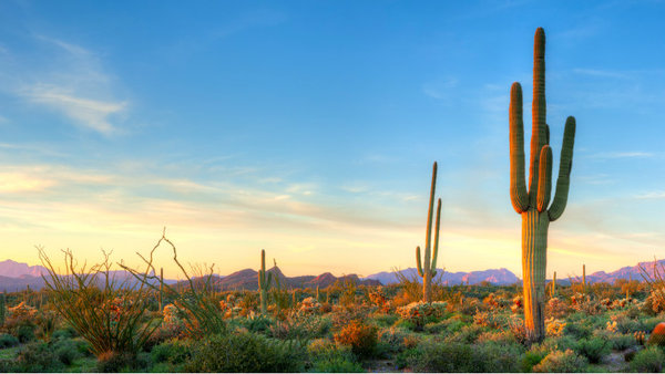 Arizona is one state which has expanded Medicaid. (Photo: iStock)