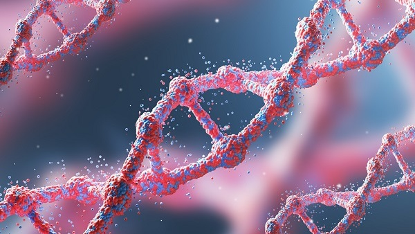 The survey also found that three-quarters (75 percent) of the respondents say that genetic testing can help people live a longer and better quality of life. (Photo: Shutterstock)
