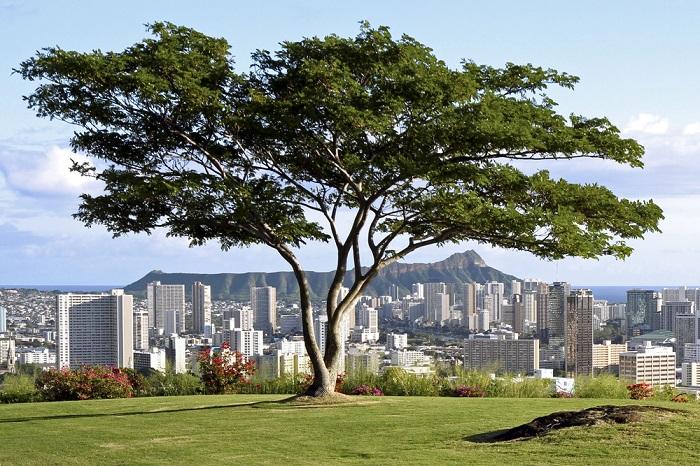 Honolulu, Hawaii (Photo: Shutterstock)