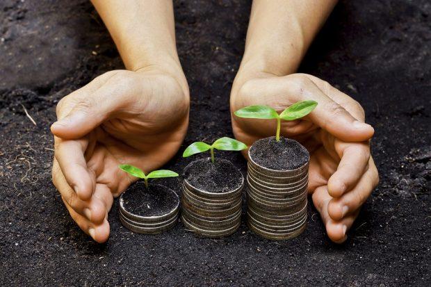 hands around money in dirt
