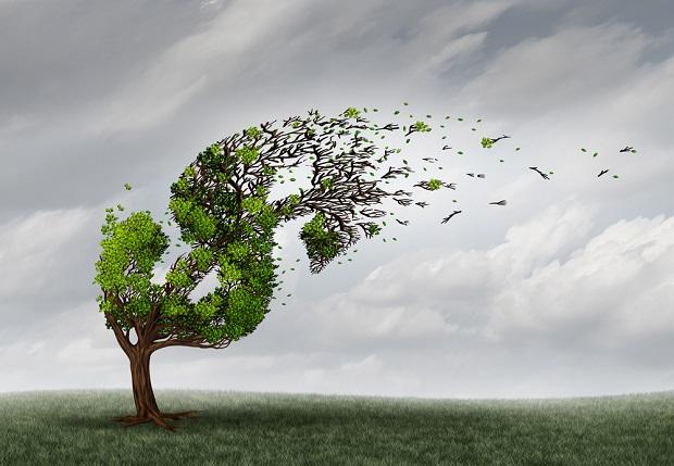 wind blowing money off tree