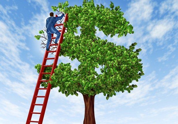 man on ladder trimming tree in shape of dollar sign