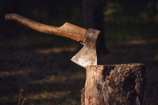 axe buried upright in a tree stump