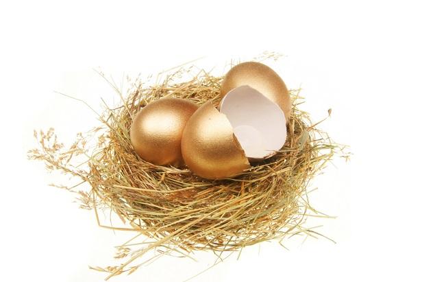 golden egg in nest broken open and empty