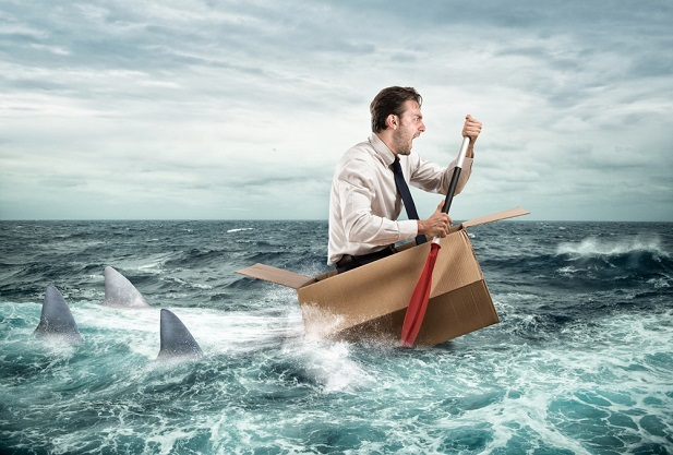 man in cardboard box struggling to paddle away from sharks