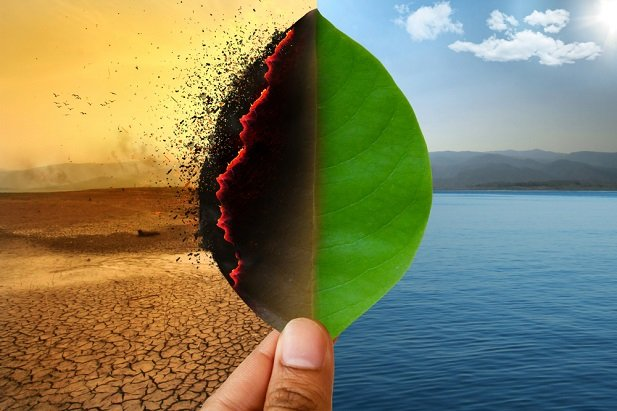 hand holding leaf on which left side is dry and desert background and right is green and water background