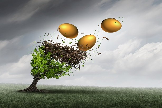 golden eggs in nest in tree flying out due to wind