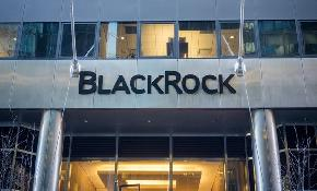 Group calls for limiting power of BlackRock Vanguard and State Street